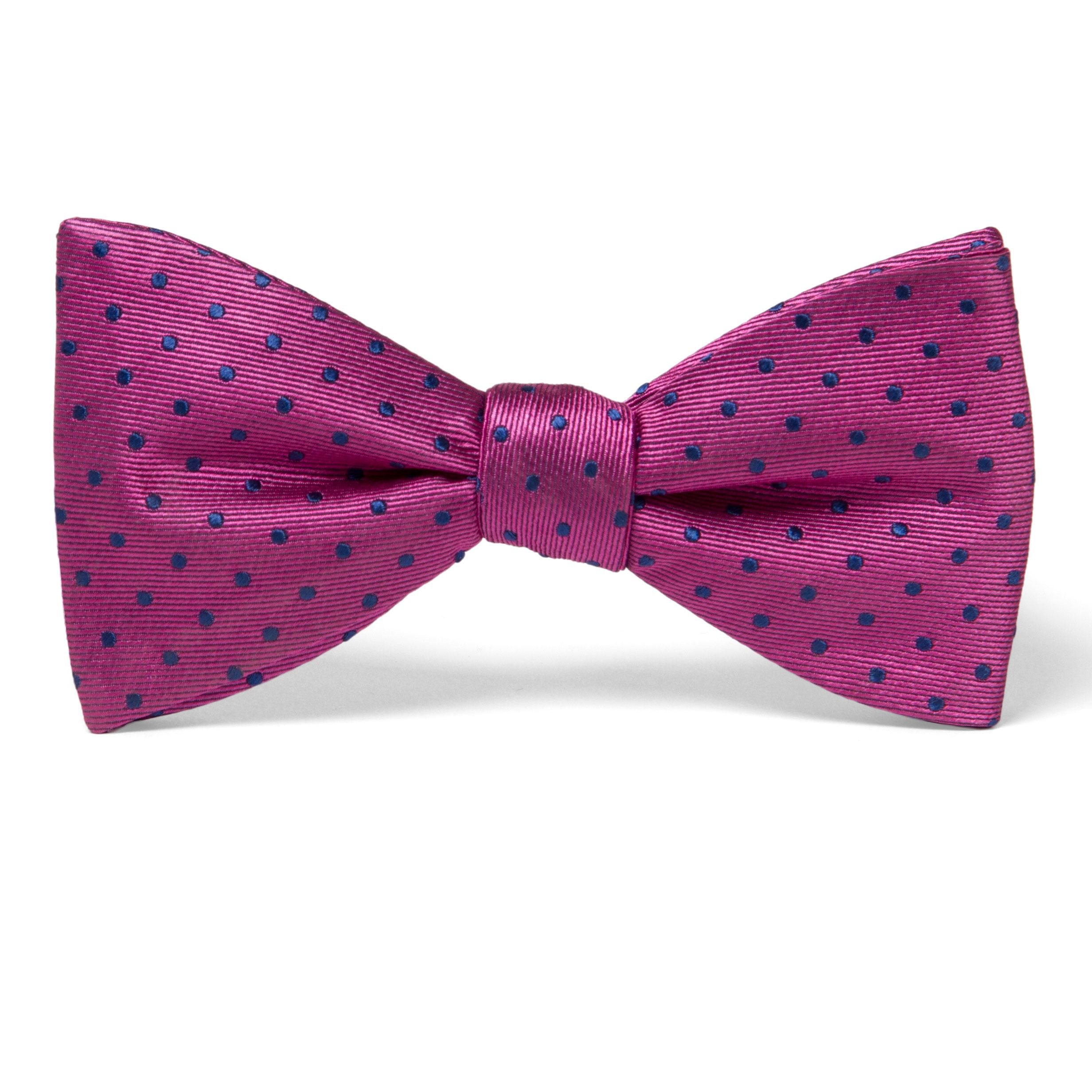 Fliege-Pink-Blau-Gepunktet-bopfru13usx00-1